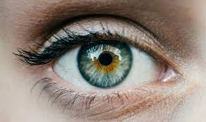 Thumbnail for the post titled: What Is An Eye Specialist?